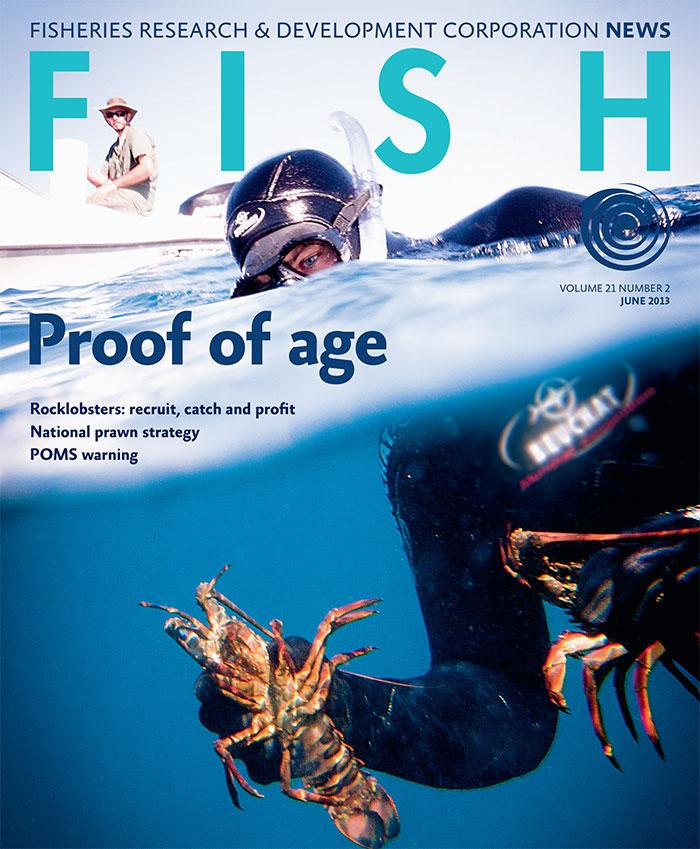 FISH Vol 21 2