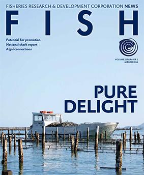 FISH Vol 22 1