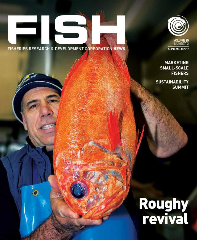FISH Vol 25 3