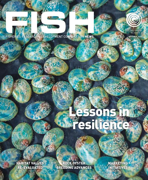 Array magazine cover